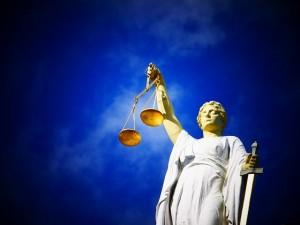 Expert Evidence on Family Court motions